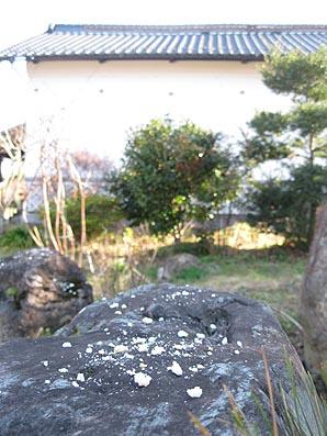 ito-20101220.jpg