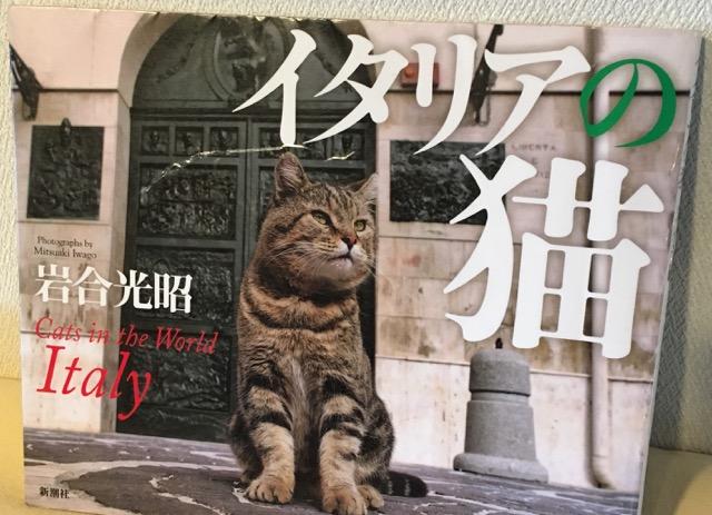 itomataro-写真集 イタリアの猫.jpg